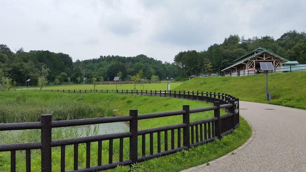 関市 中池ファミリーパーク 池