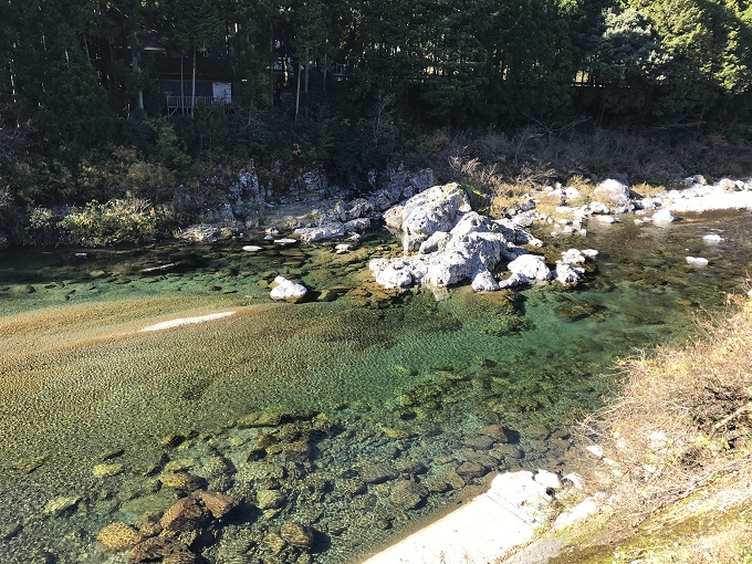 関市の名所「モネの池」板取川