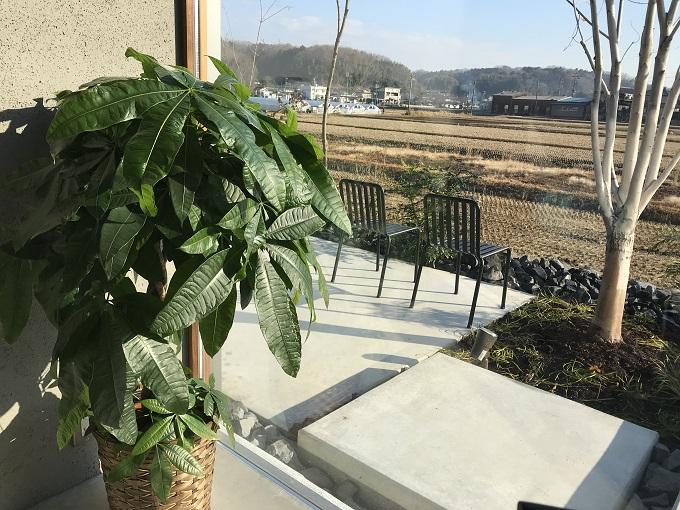 ベッカライ フジムラ<美濃加茂市> カフェ観葉植物