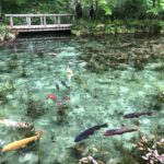 「岐阜県関市 モネの池」の駐車場とおすすめ周辺観光を紹介します