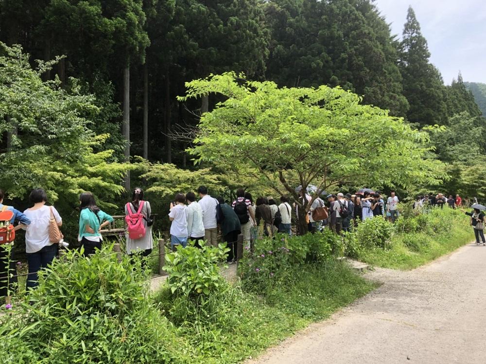 岐阜県関市モネの池 多くの撮影者