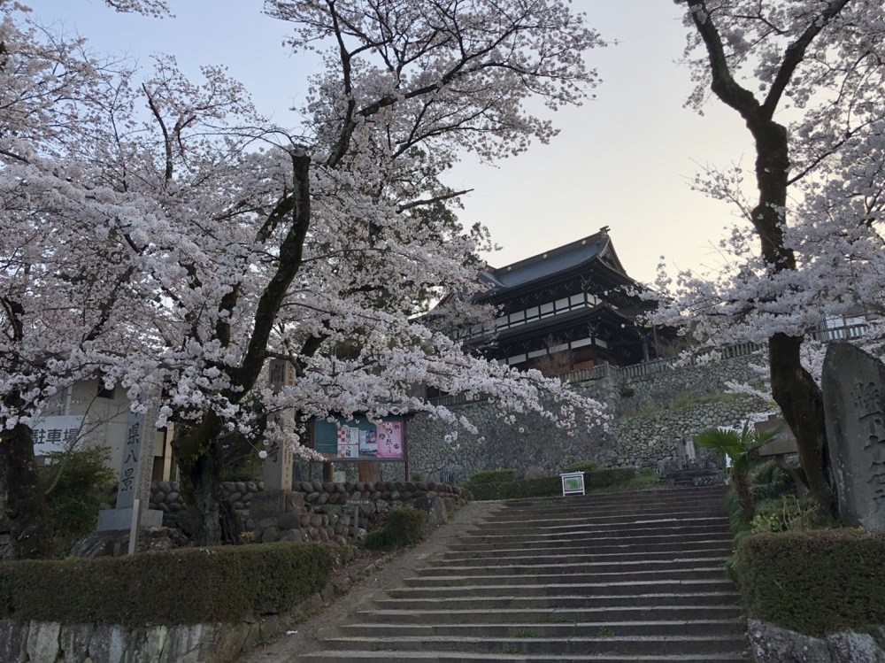 関市桜の名所 関善光寺 2018年3月28日朝 撮影