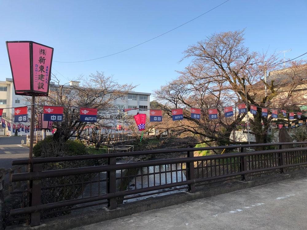 関市桜の名所 吉田川