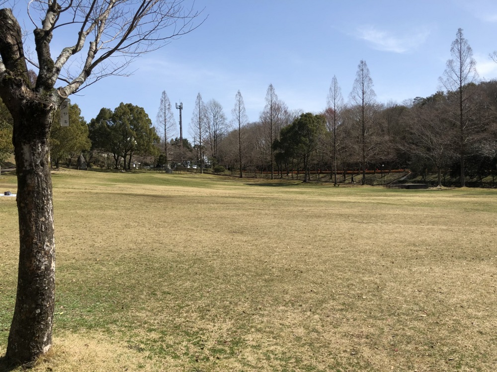 美濃加茂市前平公園 芝生広場