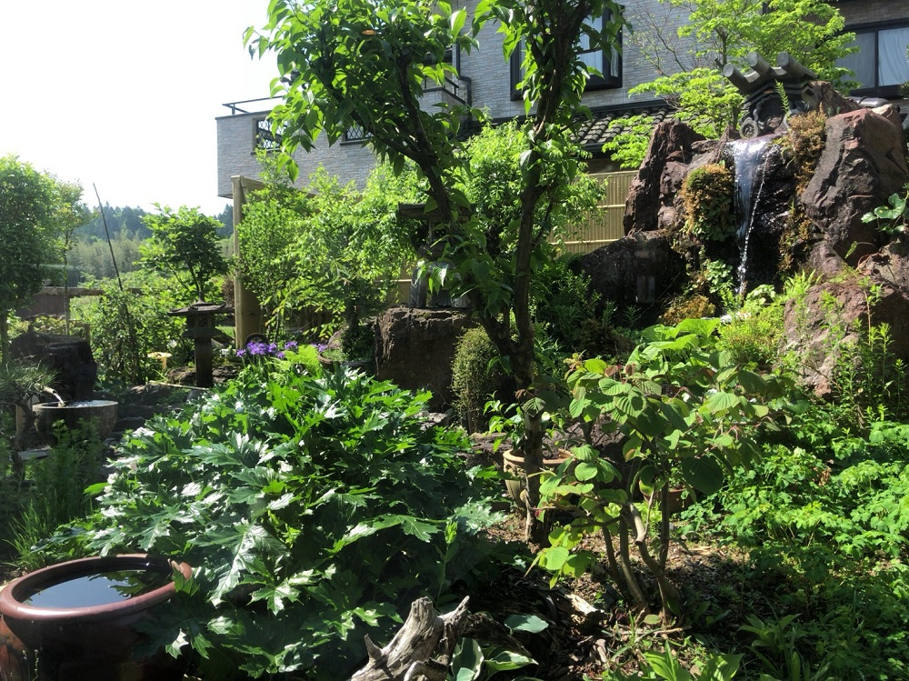 珈琲とサンドウィッチの店 cafeクローバー 中庭