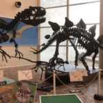 岐阜県博物館はこどもと一緒に楽しく学べるおすすめ施設
