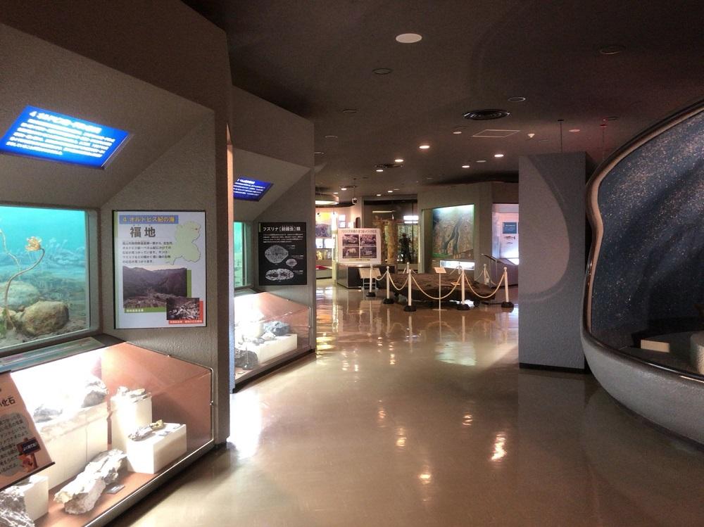 岐阜県博物館 自然展示室1