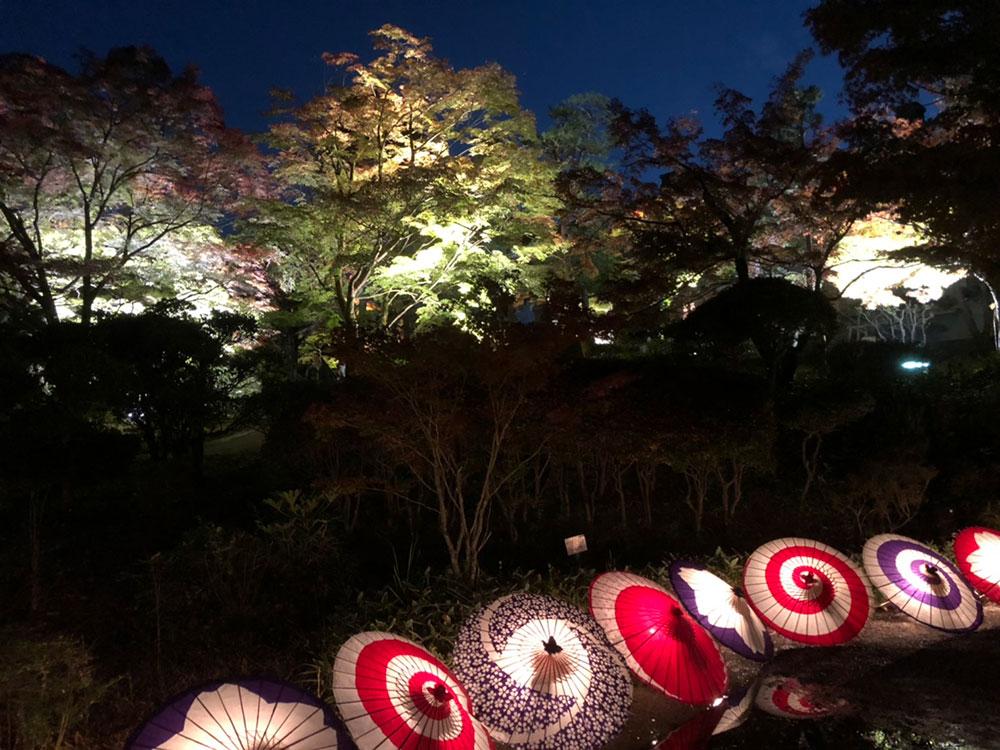 明治村の紅葉ライトアップ、和傘の灯り
