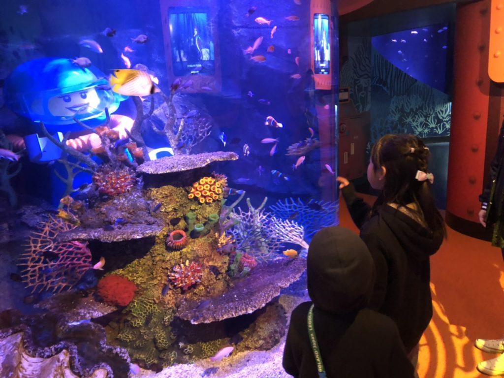 シーライフ名古屋 レゴブロックと魚