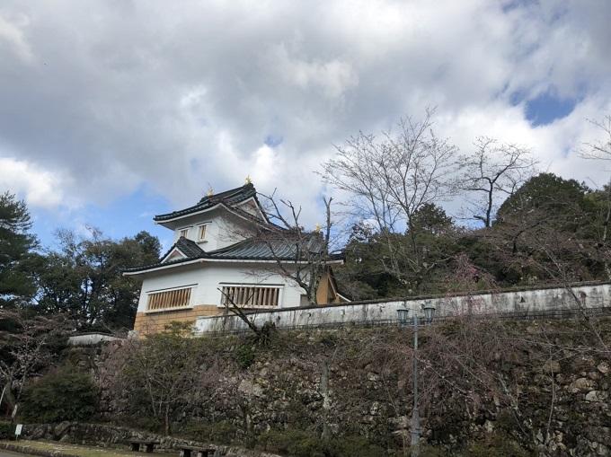 美濃市 小倉公園 桜の開花状況 3月31日