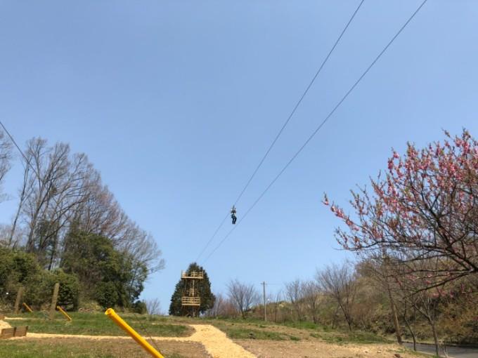 ぎふ清流里山公園のメガジップライン