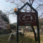 喫茶館 花の木は寺尾ヶ原千本桜公園近くのおすすめモーニング