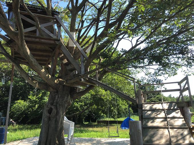 ヤマキマルシェのイチゴのツリーハウス