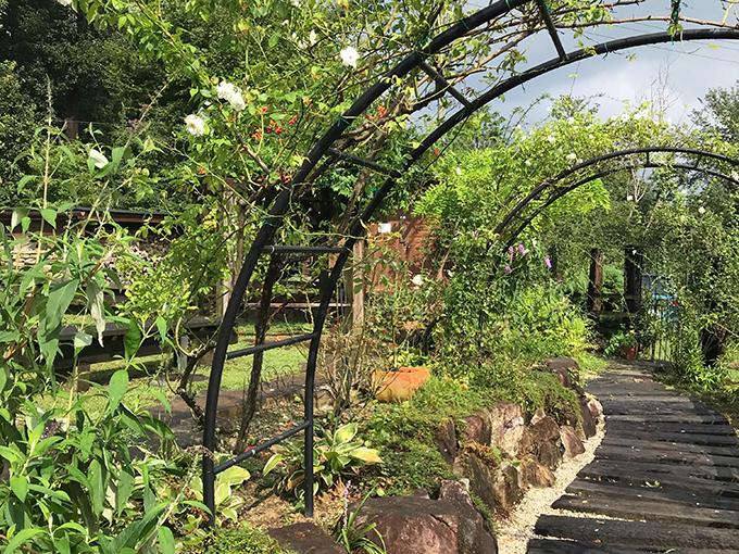 ラ・プロヴァンスの木々や花