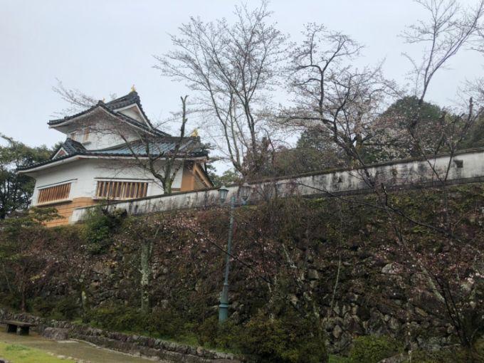 小倉公園の桜 2020年3月28日