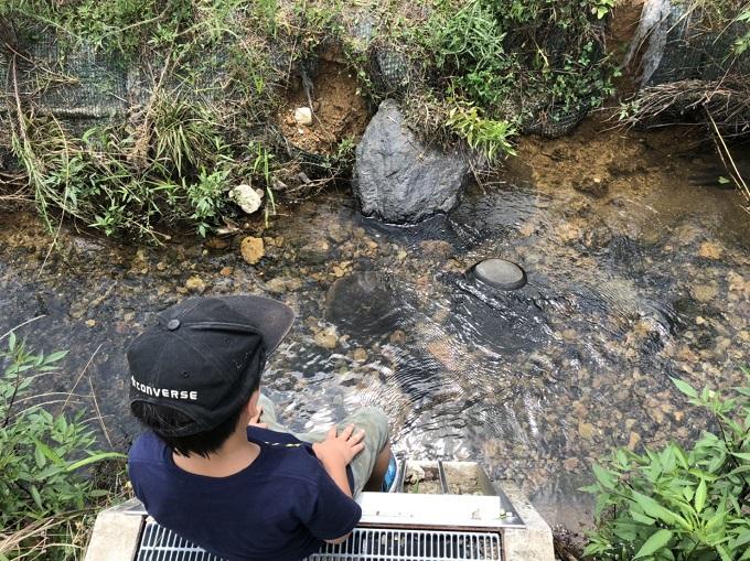 公園の横の用水路