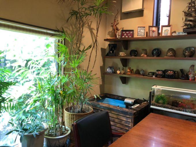 珈琲家 茶倉(さくら)の水槽