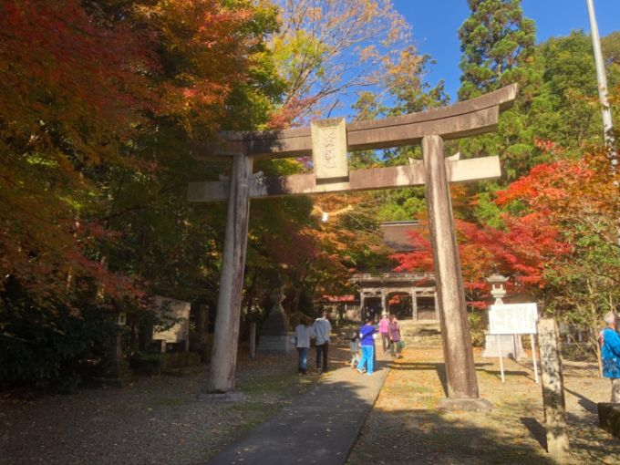 大矢田神社の鳥居の紅葉